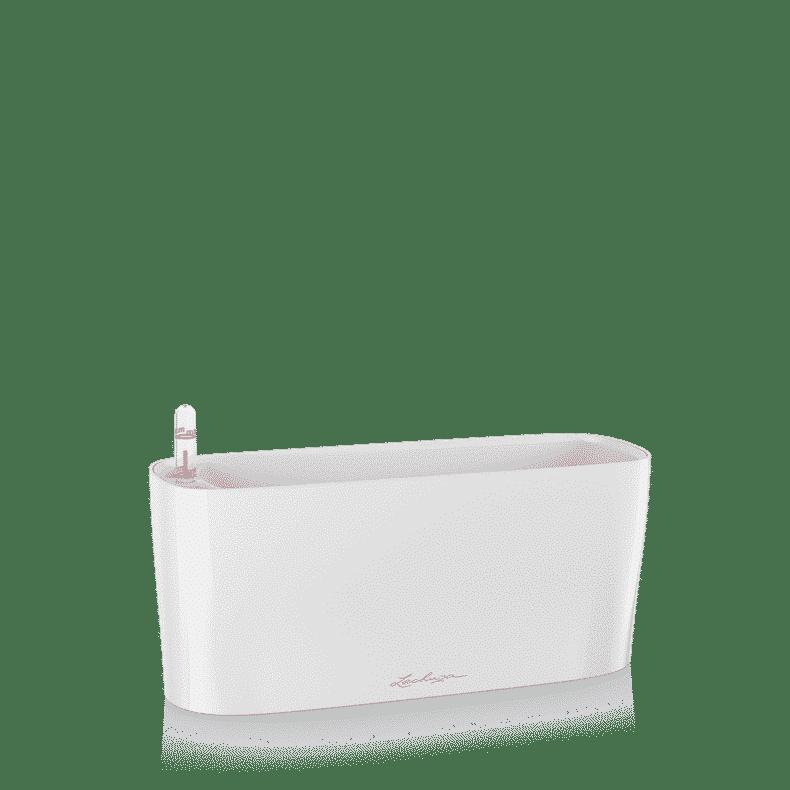 Lechuza aroid pot